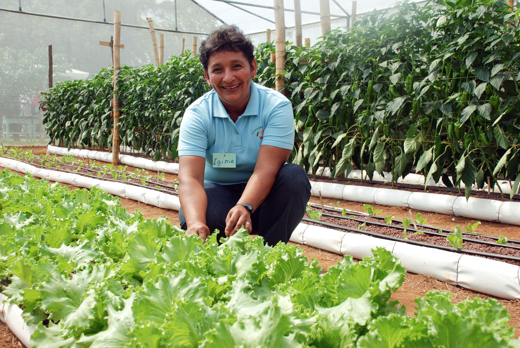 Women showing off her vegetables she grows in her greenhouse in Latin America