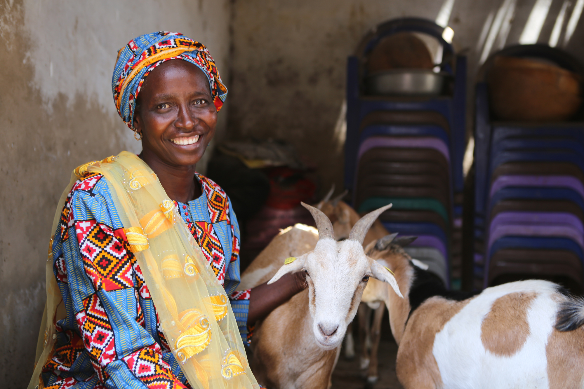 Female client with the goats she breeds in Senegal