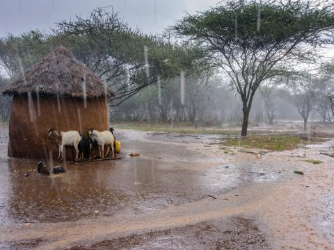 House being flooded by rains in Kenya