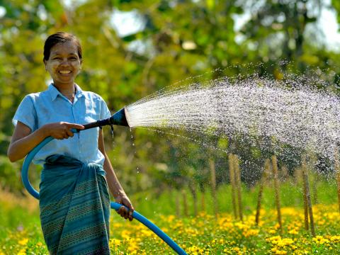 Woman watering her flower fields in Myanmar