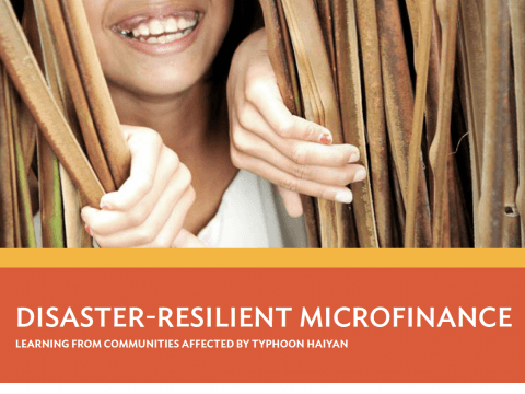 disaster-resilient-microfinance