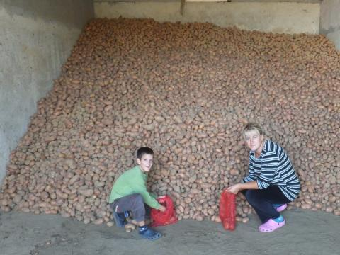 Biljana and her son with their bounty of potatoes harvest.