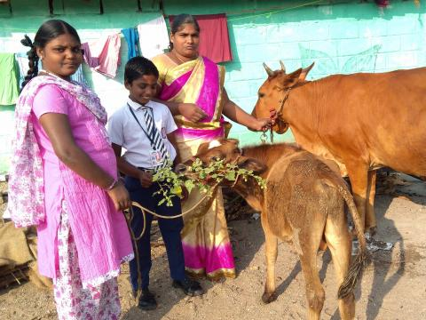 Selvi with her two child with the cows she purchase from her loan proceeds.
