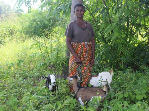Idah Yohane with her goats in a field