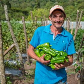 Man standing in Honduras holding peppers from his farm