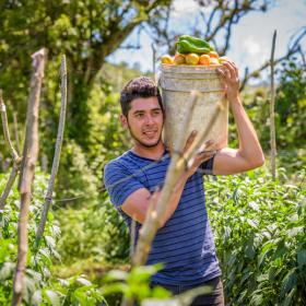 Man carrying bucket of tomatoes and peppers in Honduras