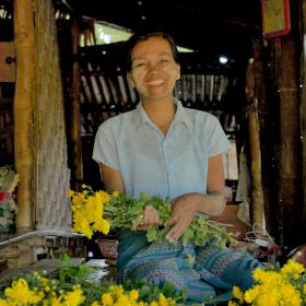 Woman cutting flowers from her flower farm in Myanmar