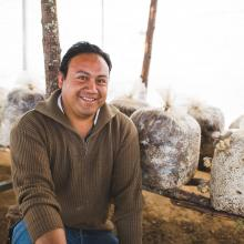 Man growing mushrooms for his business in Mexico
